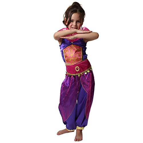 Storybook Wishes Purple Arabian Princess Dress Up Costume (Choose Size) (2/4, Purple) -