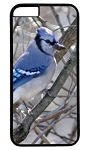 Blue Jay on A Branch DIY Hard Shell Black Best Designed iphone 6 Case