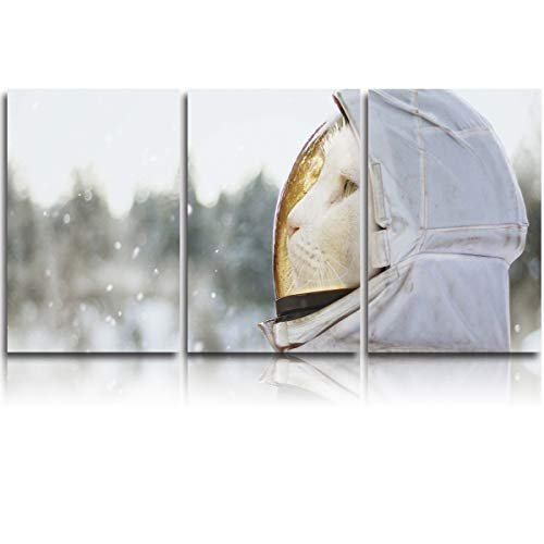 Fandim Fly 3 Pieces Canvas Painting Wall Art,