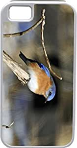 Case For Ipod Touch 5 Cover Customized Gifts Cover Beige Bird on a branch DesiIdeal Gift