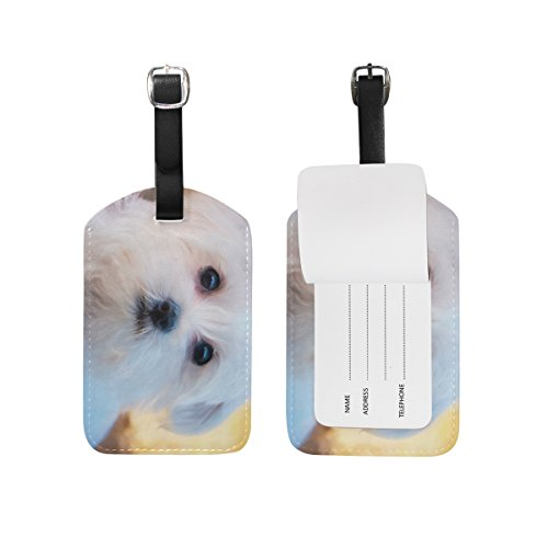 Blue Viper White Dog Cute Bichon Frise PU Leather Luggage Tags Personalized (Luggage Tag Bichon Leather Frise)