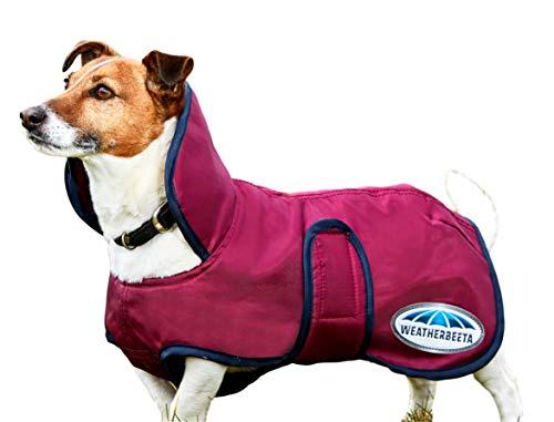 Weatherbeeta Windbreaker 420D Deluxe Dog Coat, Shiraz/Blue, 26
