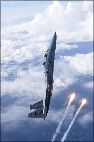 F-15d Eagle - 20x30 Poster; F-15D Eagle From The 325Th Fighter Wing