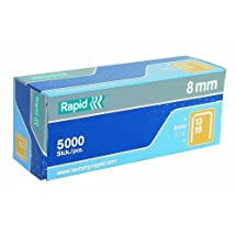 Rapid 23391500 5/16-Inch 19 Series Fine Wire Staples with R19E and R23, 5000 Per Box