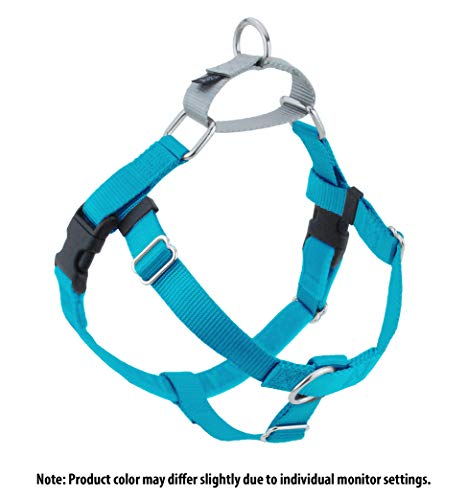 2 Hounds Design Freedom No-Pull Dog Harness, Adjustable Comfortable Control for Dog Walking, Made in USA (Leash Sold Separately) (Large 1) (Turquoise)