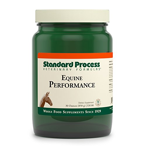 Rebuilding Pack - Standard Process - Equine Performance - Supports Nutrition, Cellular Activity, Muscle-Rebuilding, and Energy Levels - 30 oz.