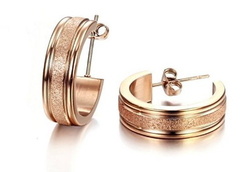 Fekkai Jewelry Fashion Women's Earrings Rose Gold Plated Dull Polished Circle Titanium Steel Stud Earring (Fekkai Rose)