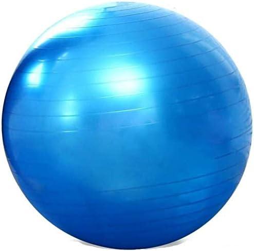 WYF エクササイズ、フィットネス、ジム、ヨガのために使用されるフィットネスボール、ヨガボール、55センチメートルソフトピラティスフィットネスボール、 ヨガボール