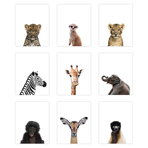 9 Pack Safari Animal Poster Prints - Cute Baby Animal Wall Art - Nursery Room Decor (8