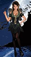 Sexy Dark Fairy Costume Dress & Wings Adult