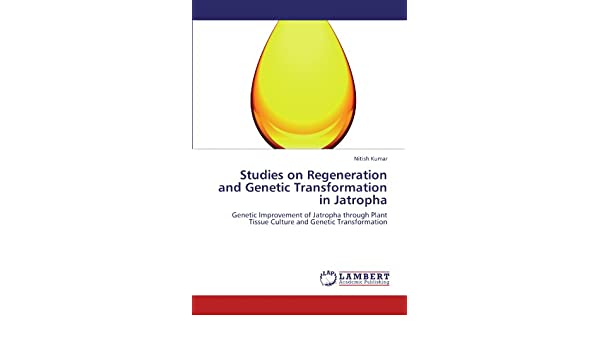 Studies On Regeneration And Genetic Transformation In