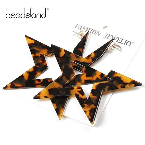 - Beadsland Women's Leopard Colored Earrings,Acetate Sheet Hoop Studs Earrings (Dk.Leopard Star)