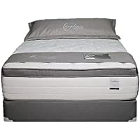 Euphoria Series II Pillow Top Hybrid Gel Memory Foam HD Micro Coil Technology Mattress and Box Set (Queen)