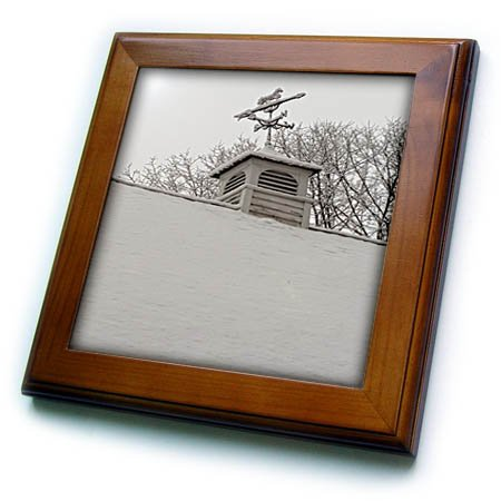 3dRose TDSwhite - Winter Seasonal Nature Photos - Winter Weathervane Snow Covered Roof - 8x8 Framed Tile (ft_285054_1)