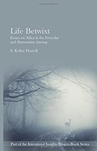 Life Betwixt - Essays on Allies in the Everyday and Shamanism Among (Intentional Insights Blog-to-Book Series 2) (Volume 2)