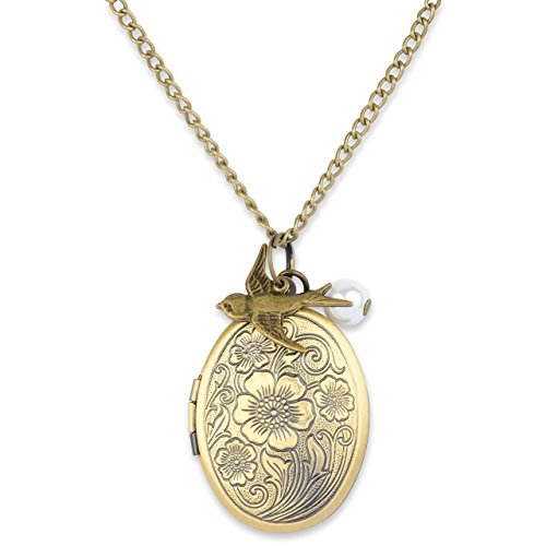 Mint Jules Antique Swallow Bird and Pearl Charm Pendant Picture Locket Necklace (Antique Bronze) ()