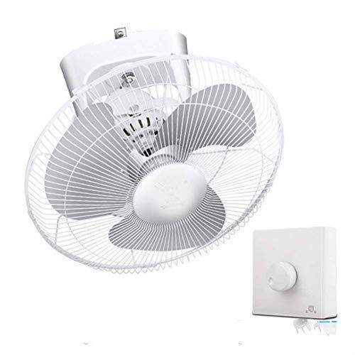 Electric Fan 220V 55W 400Mm 16 Inch Ceiling Fan Electric Fan Iron Blade Shaking Head Stepless Speed Regulation