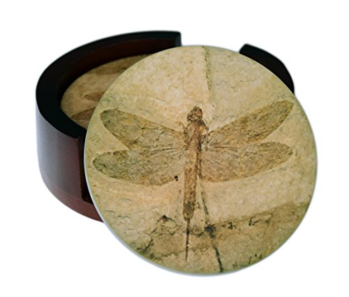 Fossil Dragonfly Images - 4-Piece Round Sandstone Coaster Set - Caddy Included