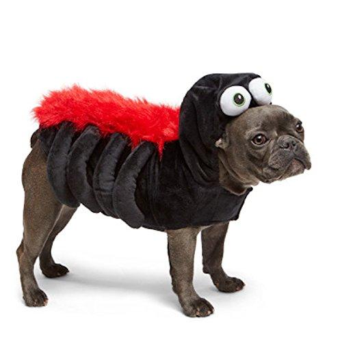 Spider Pet Dog Costume