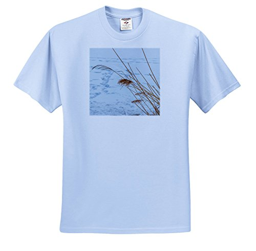 Alexis Photography - Seasons Winter - Dry Reed Stems Over The Snow-Covered Ground. Winter Season - T-Shirts - Adult Light-Blue-T-Shirt Small (ts_284009_50)