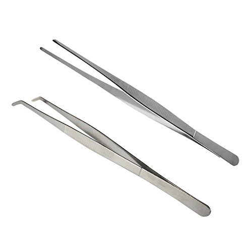 Bwogue 2pcs Extra Long Stainless Steel Tweezer Feeding Tool - 11.8 inches, Safe and Durable to Hold Worms, Crickets and Bugs, Great for Reptiles, Iguanas, Bearded Dragons, Lizards, Geckos (Dragon Gecko)