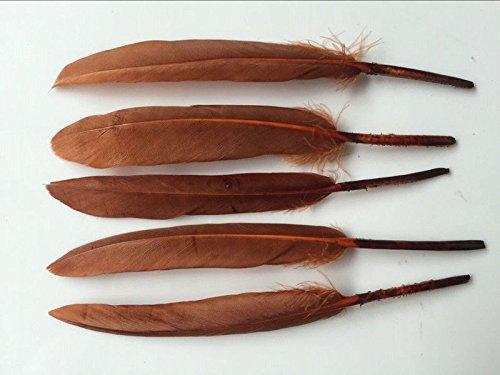 Diy Costumes (WAKEACE Goose Feathers 100Pieces 4-6 Inch \ 10-15CM DIY Headdress Costume Design)