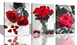 pictures of white kitchens Ardemy Canvas Wall Art Red Rose 3 Panels Flowers Pictures Prints Black and White Painting Modern Romantic Florals Framed Ready to Hang for Bathroom Kitchen Bedroom Washing Room Spa Wall Decor