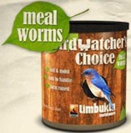 Timbuktu Mealworms