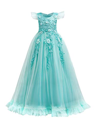 LIEEN Girls Flower Embroidery Cap Sleeve Formal Party Pageant Tulle Dress
