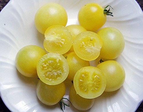 snow white tomato seeds - 1
