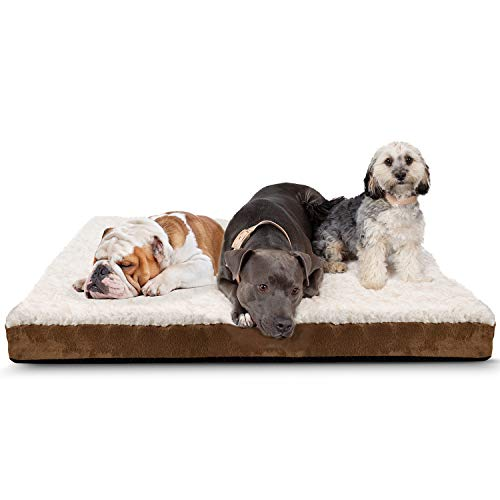 Paws & Pals Orthopedic Pet Bed Foam-Mattress for Dogs & Cats - Quilted Rectangular Fits Crate Carrier - Extra Large 44 Long x 35 Wide