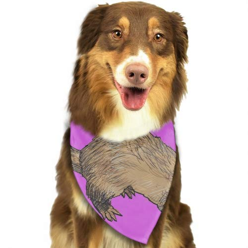Premium Home Drawing of Ferret Dog Bandana Washable Reversible Triangle Bibs Scarf, Plaid Painting Kerchief for Small/Medium/Large Dogs and Cats