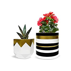 "Pack of 2 White Pretty Ceramic Flower Pots Garden Succulent Cactus Planter with Drainage Hole, Indoor Planter with Sturdy White Ceramic/Golden Coating, Gold Pots Sizes 6.5"" Large 5.5"" Small 35"