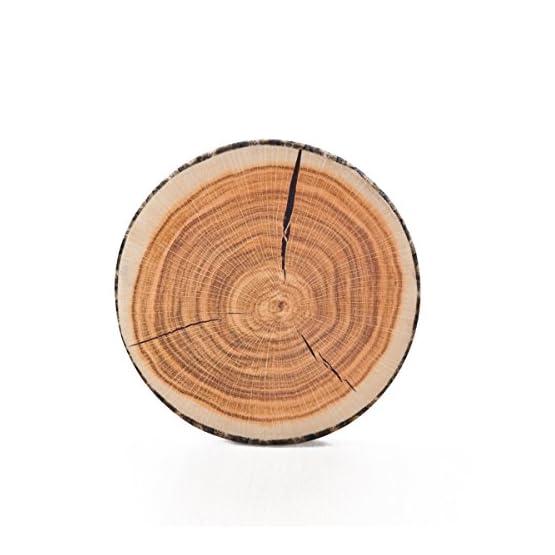Tree Stump Pillow Plush | Round Wood Slice Pillow 1