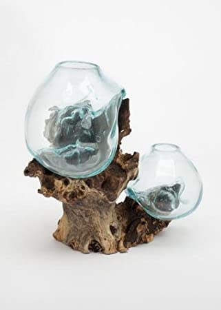 Amazon.com: Hand Blown Molten Double Glass and Wood Root Sculptured ...