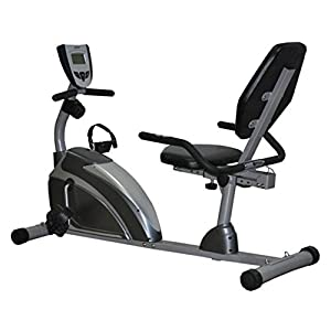 Exerpeutic Exerpeutic 900XL Extended Capacity Recumbent Bike with Pulse from Paradigm Health and Wellness Inc