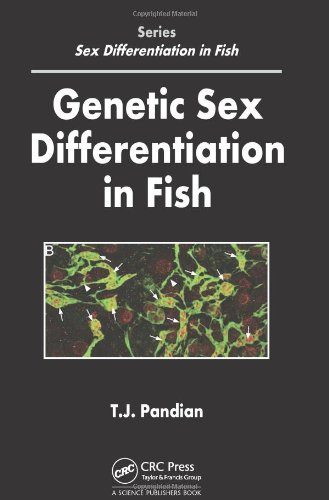 Genetic Sex Differentiation in Fish