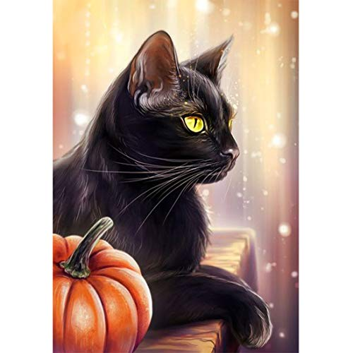 Full Drill DIY Square Diamond Painting Kit, Black Cat Pumpkin Halloween Embroidery Cross Stitch Arts Craft Canvas Wall Decor