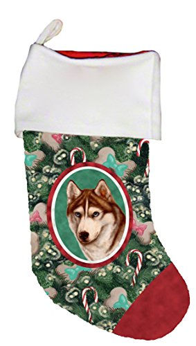 - Best of Breed Siberian Husky Red/White Blue Eyes Dog Breed Christmas Stocking