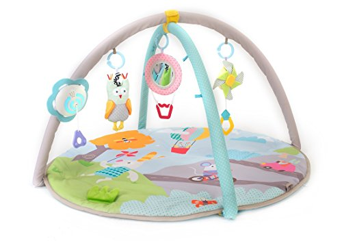 Taf Toys Baby Play Gym Thickly Padded Soft Play Mat, Portable, Lightweight, Car Seat Cot Attachable Multi-Sensory Hanging Toys with Colorful Lights and Sounds, Detachable Arches, Ideal Gift