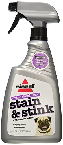 Bissell 35L6 Enzyme Action Pet Stain and Stink Remover, 22-Ounce