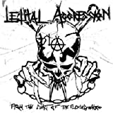 From the Cunt of the Fucking Whore by Lethal Aggression