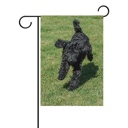(lychi Black Standard Poodle Running On Grass Polyester Garden Flag Banner 12 x 18 Inch for Outdoor Home Garden Flower Pot Decor )