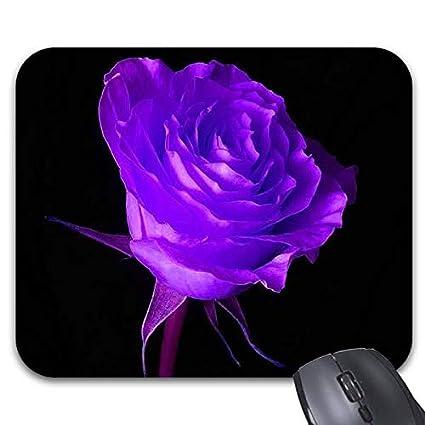 amazon com good night love purple roses mouse pads 9 x 7 5