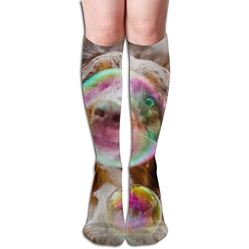 Tube High Keen Sock Boots Crew Bubble Dog Compression Socks Long Sport Stockings by Curitis