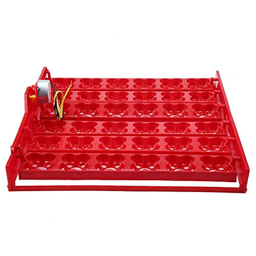 (Automatic Egg Turner Rack Eggs Incubator Hatcher Bird Poultry Egg Turning Tray with Motor for Chickens Ducks Pigeons and Other Birds Quail(US))