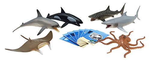 Nature Bound Marine Animals Safari Large Set with Collector Cards