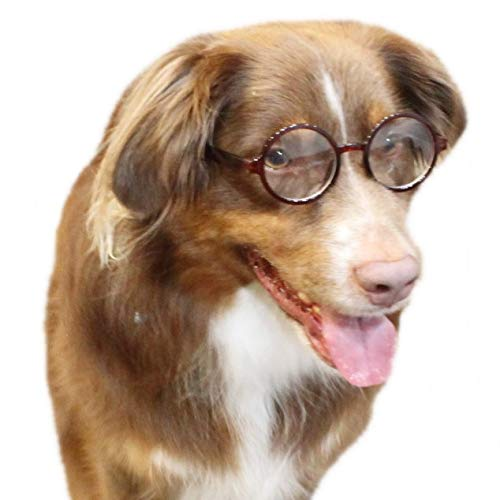 Style Vault G003 Dog Clear Lens Round Glasses for Costume Party & Photo Shoot (Crystal Brown-Clear)