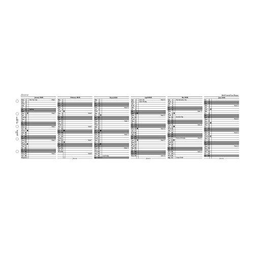 Filofax 2019 Mini Vertical Planner Refill, Jan 2019- Dec 2019, Monthly, 4.125 x 2.625 inches (C68102-19)