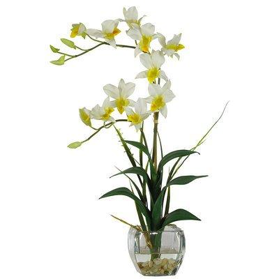 Nearly Natural Dendrobium w/Glass Vase Silk Flower Arrangement ()